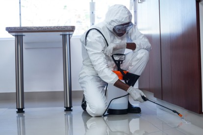 Emergency Pest Control, Pest Control in Roehampton, SW15. Call Now 020 8166 9746