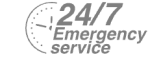 24/7 Emergency Service Pest Control in Roehampton, SW15. Call Now! 020 8166 9746